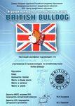 Сертификат участника игрового конкурса по английскому языку «British Bulldog»: Шелапутин Денис