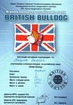 Сертификат участника игрового конкурса по английскому языку «British Bulldog»: Табунова Валерия