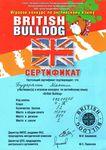 Сертификат участника игрового конкурса по английскому языку «British Bulldog» получил четвероклассник Максим Бударагин, набравший 52 балла и занявший 1 место в школе.