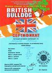 Сертификат участника игрового конкурса по английскому языку «British Bulldog» получила Петрова Марина, набравшая 27 баллов и занявшая 2 место в школе.