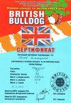 Сертификат участника игрового конкурса по английскому языку «British Bulldog» получил пятиклассник Дмитрий Попов, набравший 37 баллов и занявший 1 место по школе.
