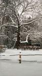 5 января «Светлячок» отправился в «Путешествие в Рождество с А.Блоком» в Шахматово-Тараканово-Тимоново